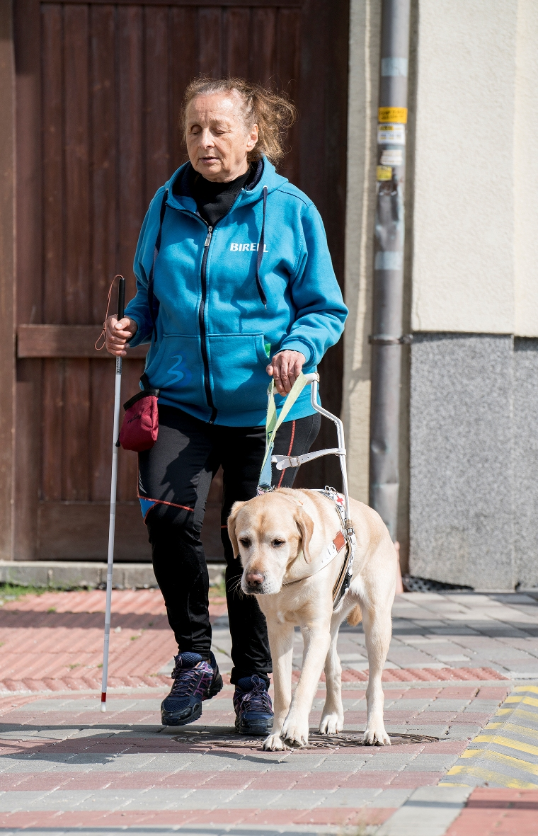 klient s vodiacim psom